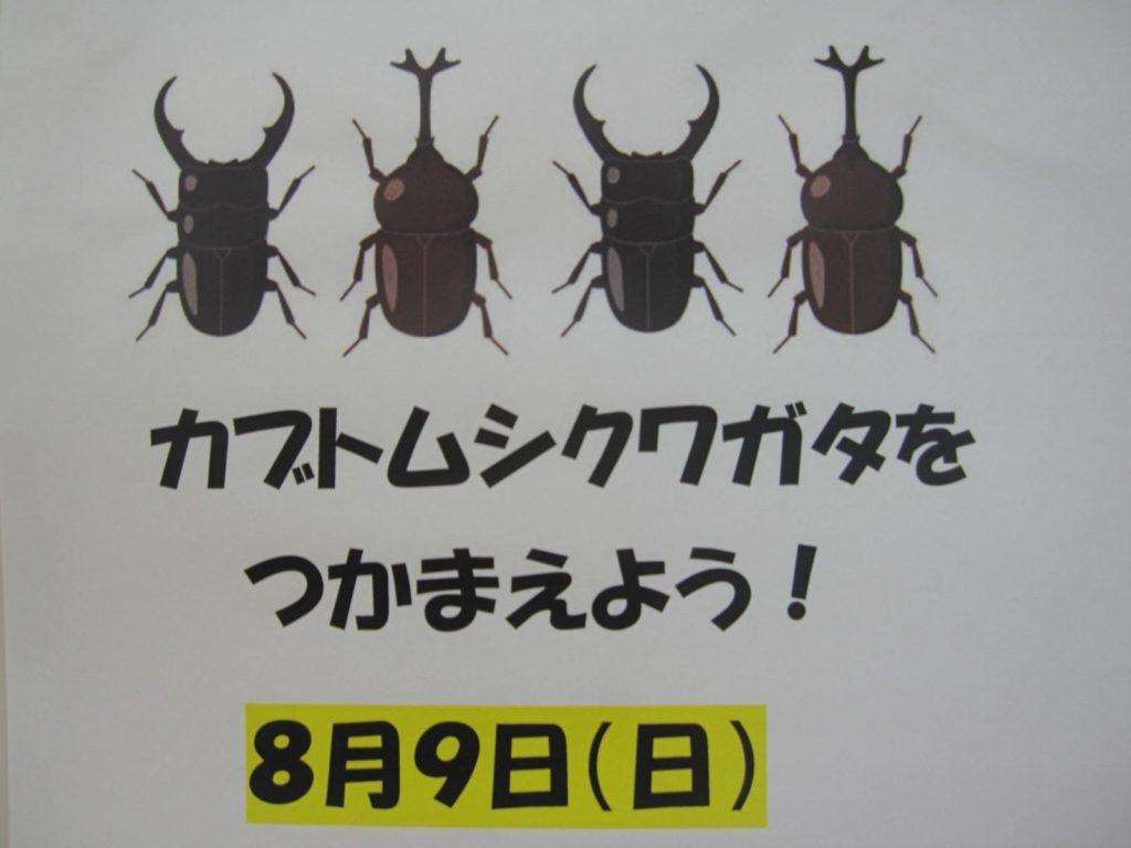 【8/9 カブトムシ・クワガタをつかまえよう!】